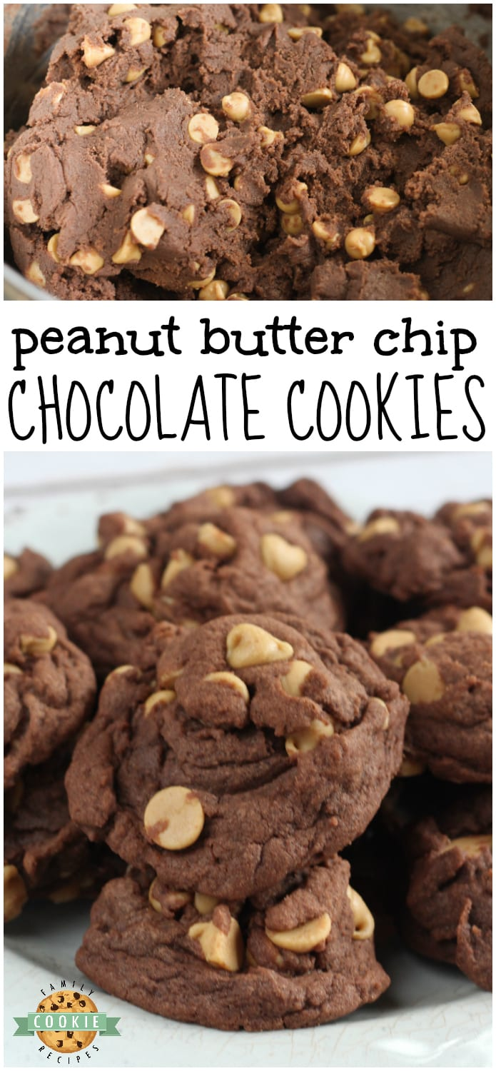 These Peanut Butter Chip Chocolate Cookies are made with chocolate pudding for a soft, chewy cookie that is completely loaded with chocolate flavor and peanut butter chips. via @buttergirls