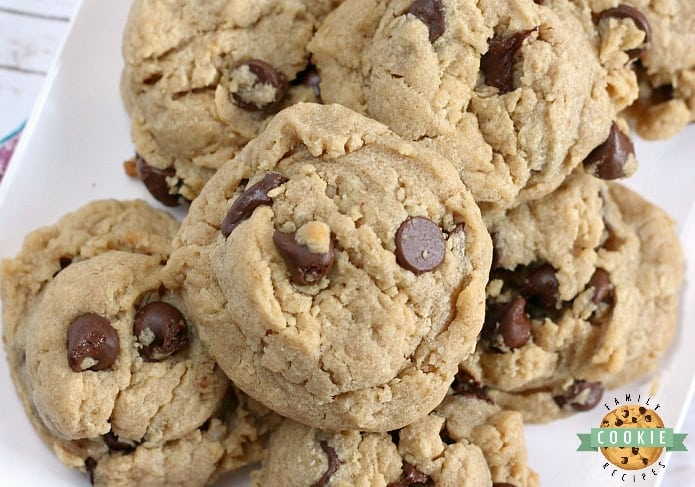 Peanut Butter Oatmeal Chocolate Chip Cookies - the perfect cookie when you can't decide which type of cookie to make!