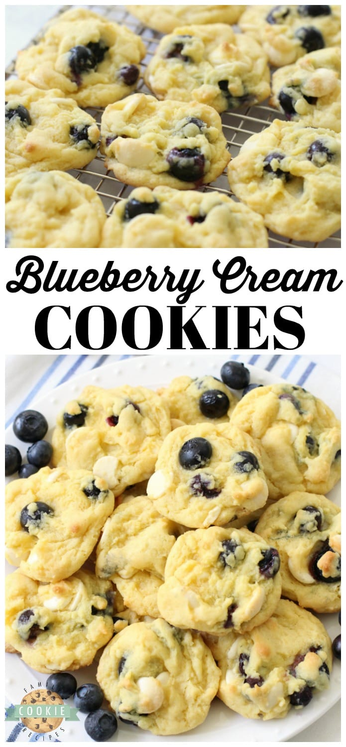 Blueberry Cream Cookies made with fresh blueberries folded into a lovely vanilla pudding cookie dough. Soft pudding cookie recipe with lovely bright, fresh flavor from fresh blueberries and white chocolate chips. #blueberries #baking #dessert #blueberry #cookies #recipe from FAMILY COOKIE RECIPES