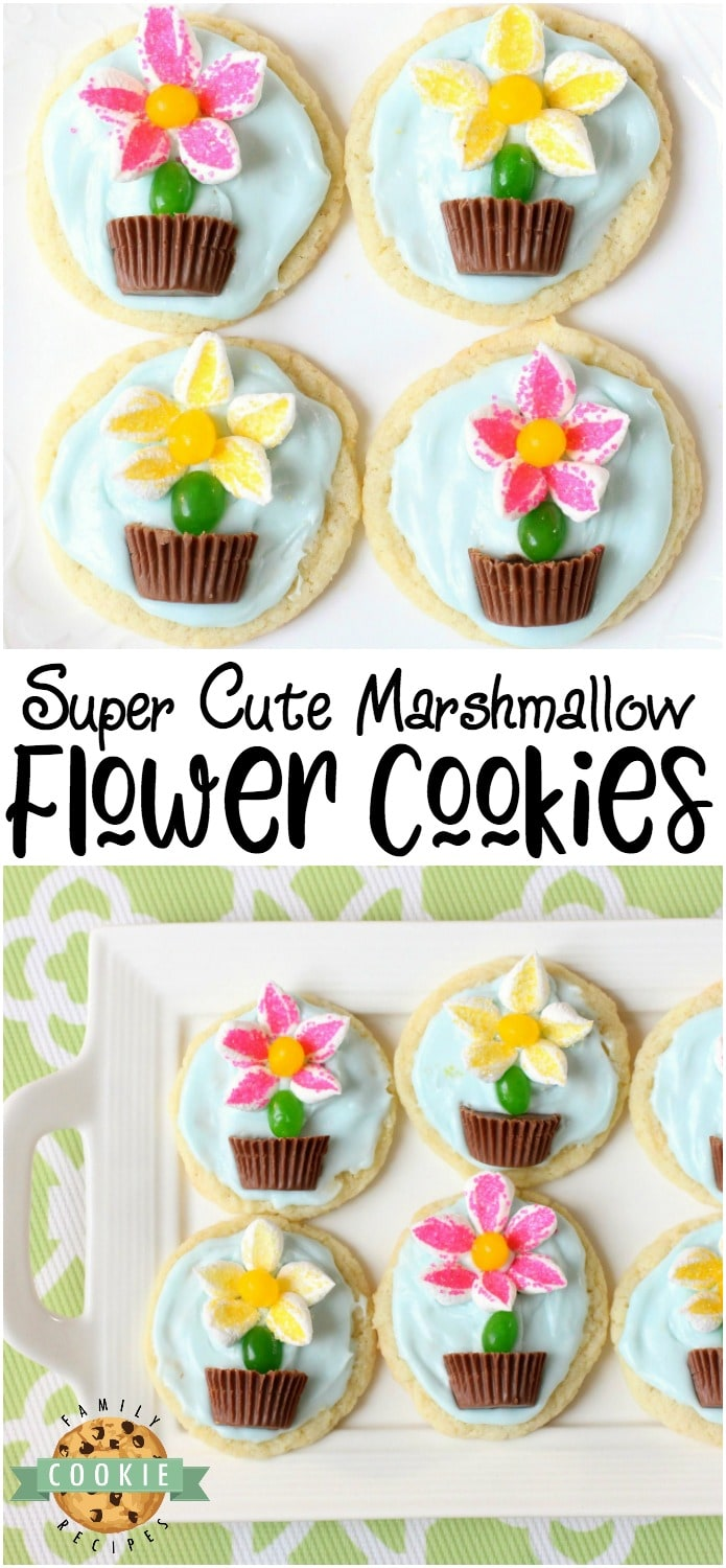Marshmallow Flower Cookies are easy to make and perfect for Spring baking! Everyone loves these cute treats topped with marshmallow flowers with a jelly bean stem, in a chocolate pot! #marshmallow #cookies #flower #candy #Spring #summer #recipe from FAMILY COOKIE RECIPES