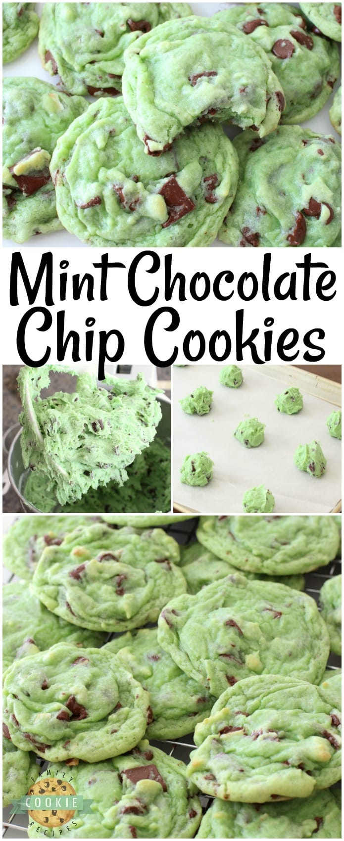 Mint Chocolate Chip Cookies made by adding mint extract & chocolate chips to a delicious pudding cookie dough. This chocolate chip cookie recipe is perfect for those who love mint chip ice cream. Our Mint Chocolate Chip Cookies are great for holiday baking! #chocolatechipcookies #cookies #cookie #mint #mintchip #baking #recipe from FAMILY COOKIE RECIPES
