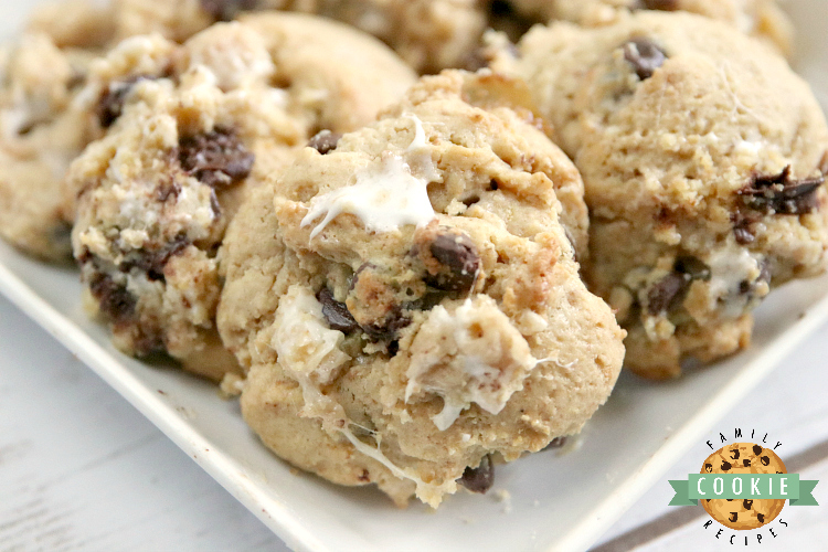 s'mores chocolate chip cookie