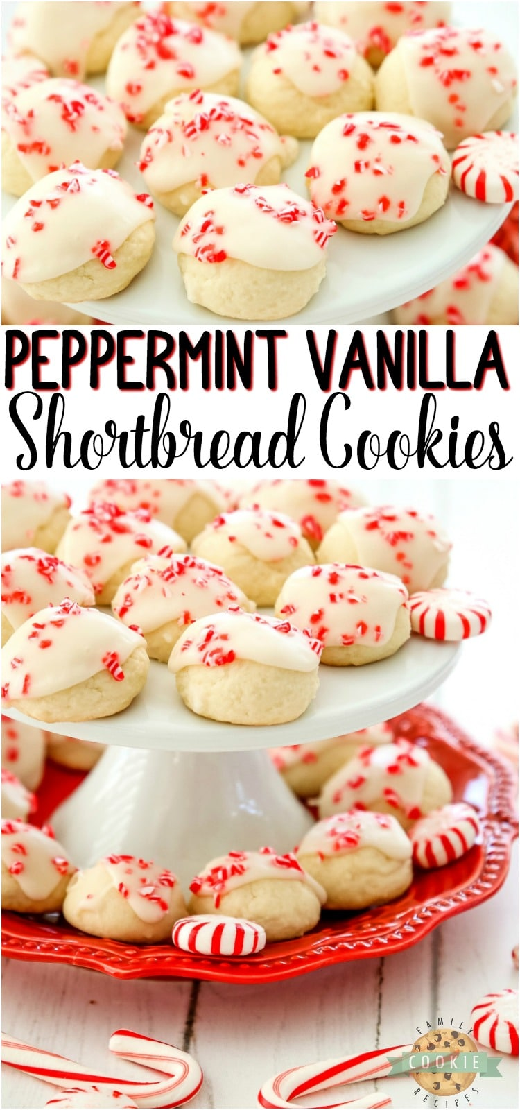 Peppermint Vanilla Shortbread Cookies are perfectly tender, buttery whipped shortbread with a lovely peppermint vanilla glaze on top! Festive Christmas cookies that everyone enjoys! #shortbread #peppermint #vanilla #baking #butter #dessert #Christmas #cookies from FAMILY COOKIE RECIPES