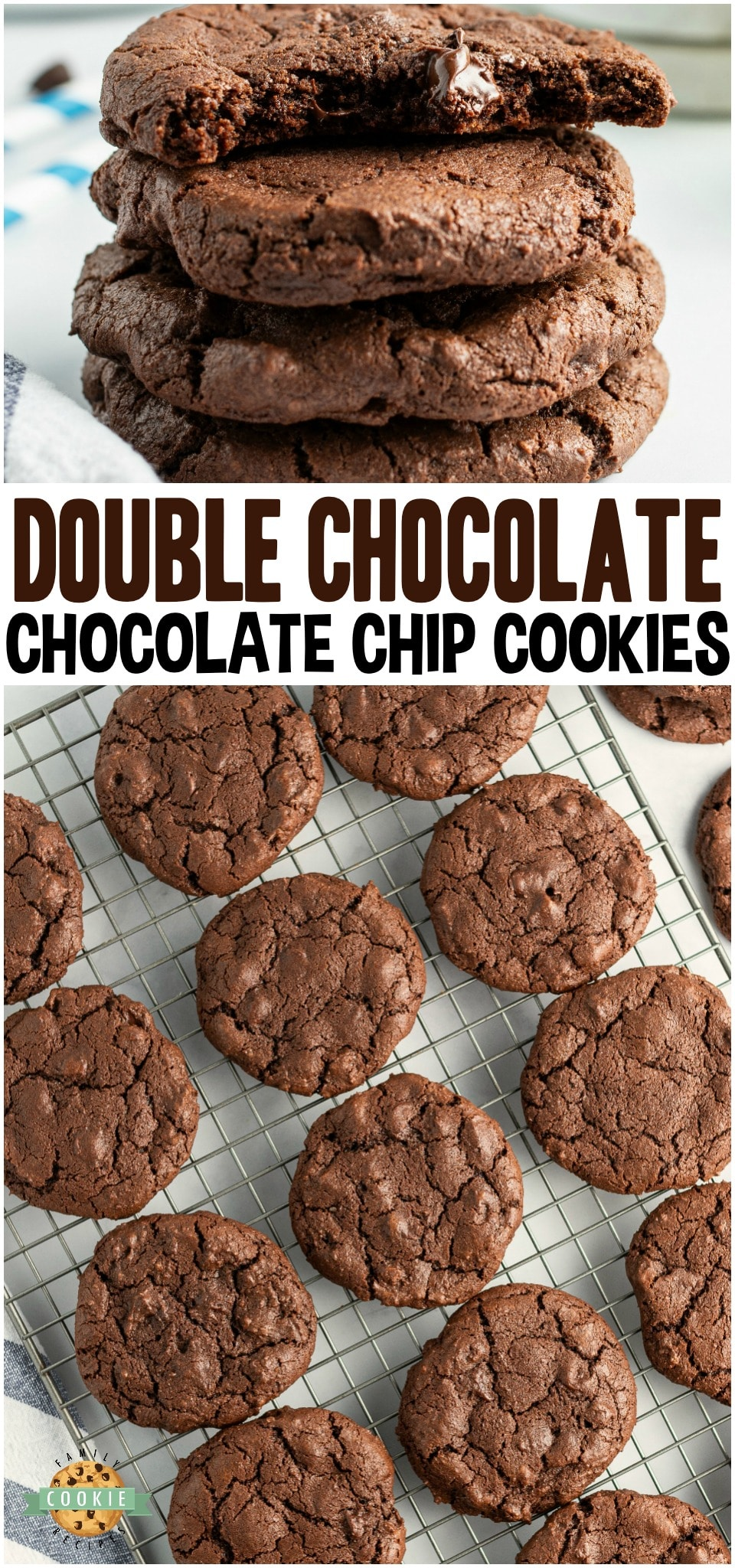 Double Chocolate Chip Cookies made with twice the chocolate for the ultimate chocolate chip cookie! Soft chewy cookies with fantastic chocolate flavor for those who LOVE #chocolate! #cookies #chocoholic #baking #dessert #deathbychocolate #recipe from FAMILY COOKIE RECIPES via @buttergirls