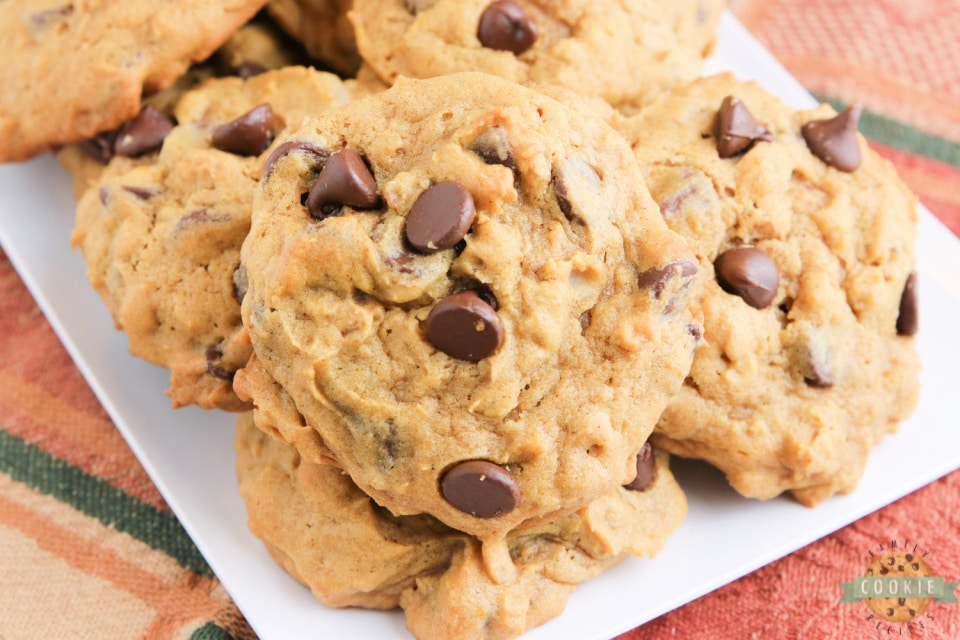 Pumpkin Oatmeal Chocolate Chip Cookies are soft, moist and loaded with pumpkin, oats and chocolate chips. Perfect oatmeal chocolate chip cookie recipe for fall!